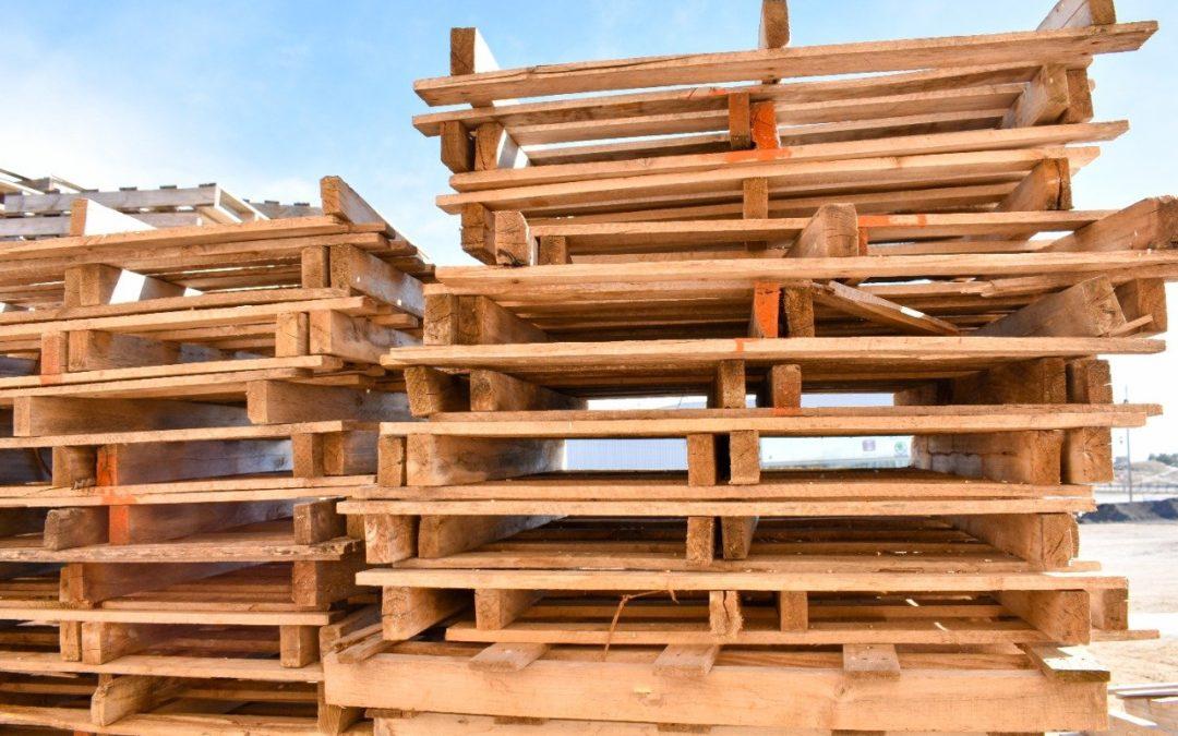 Curiosidades sobre los Pallets de madera y lo que debes saber