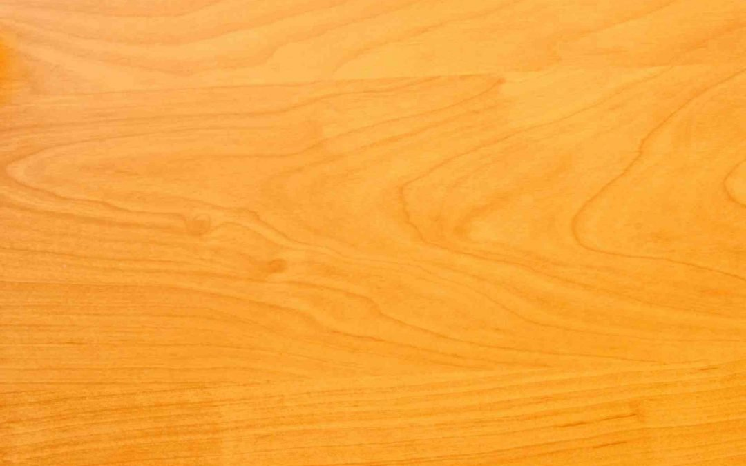 Madera De Pino Amarillo: usos, caracteristicas y más