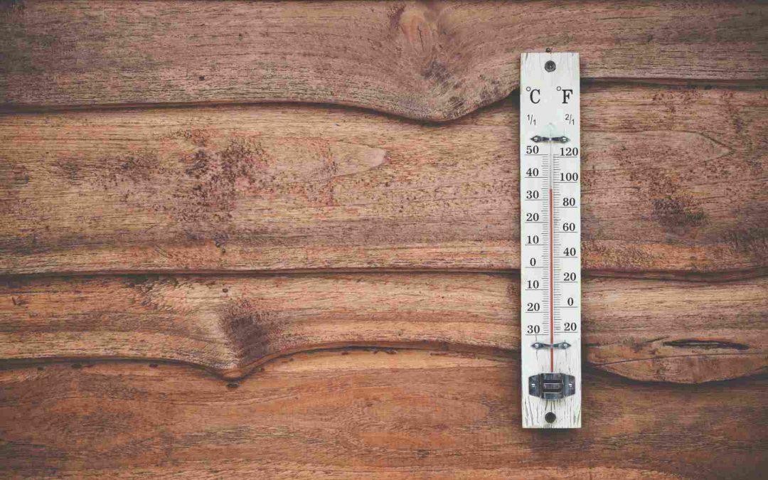 Pallets De Madera y la importancia de su tratamiento térmico