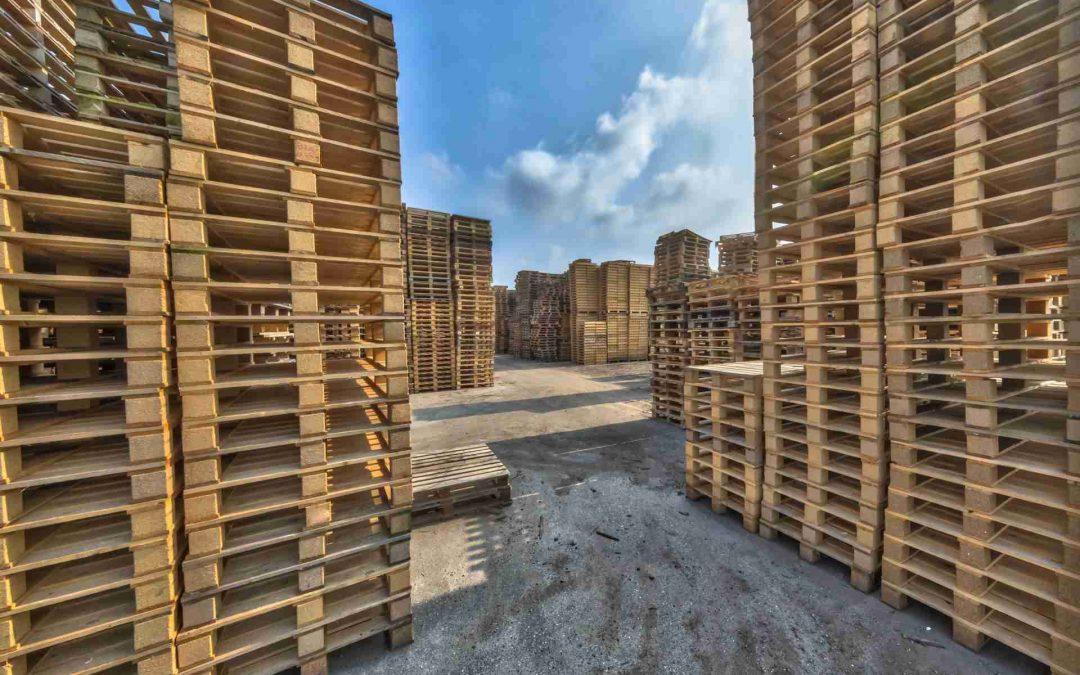 Pallets de Madera: confirman propiedades antimicrobianas de los Pallets