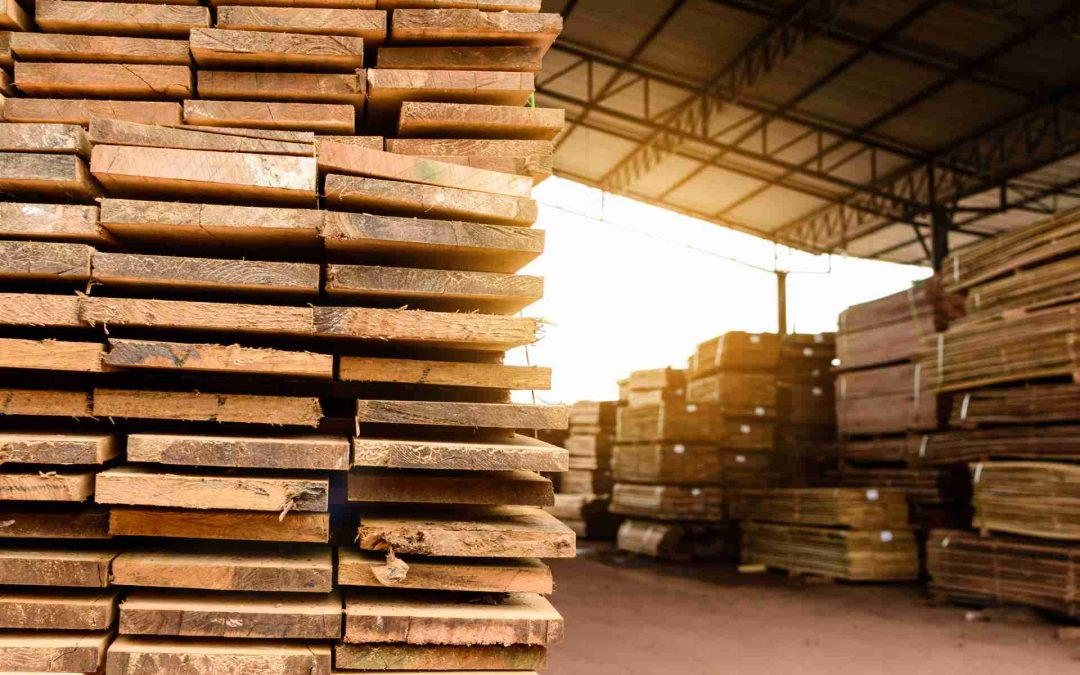 Venta de Madera copó el mercado y es un boom para el sector