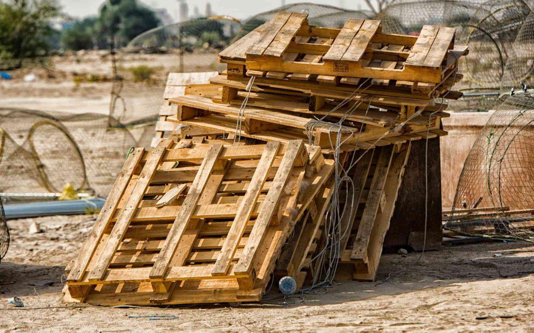 Maderera Andina: Guía para reconocer tipos de madera