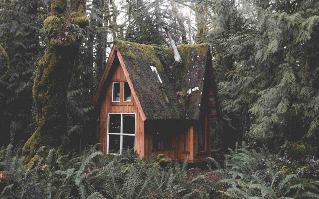 ¿Una casa atractiva usando madera? ¿Cuál madera?