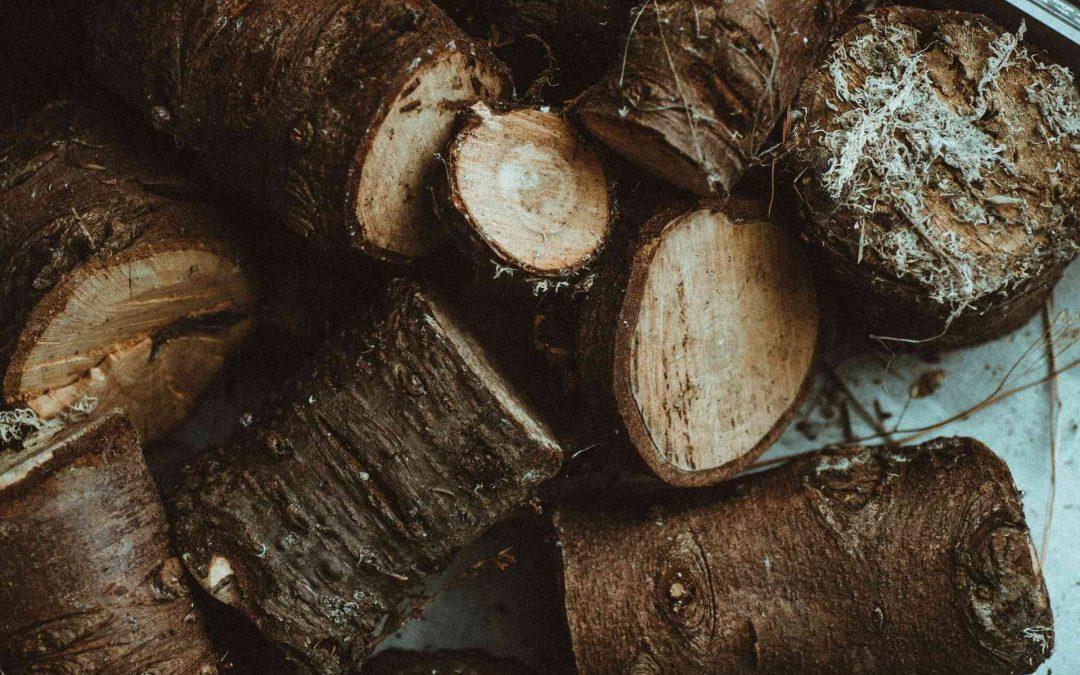 Maderera Andina: La demanda y el crecimiento de la madera