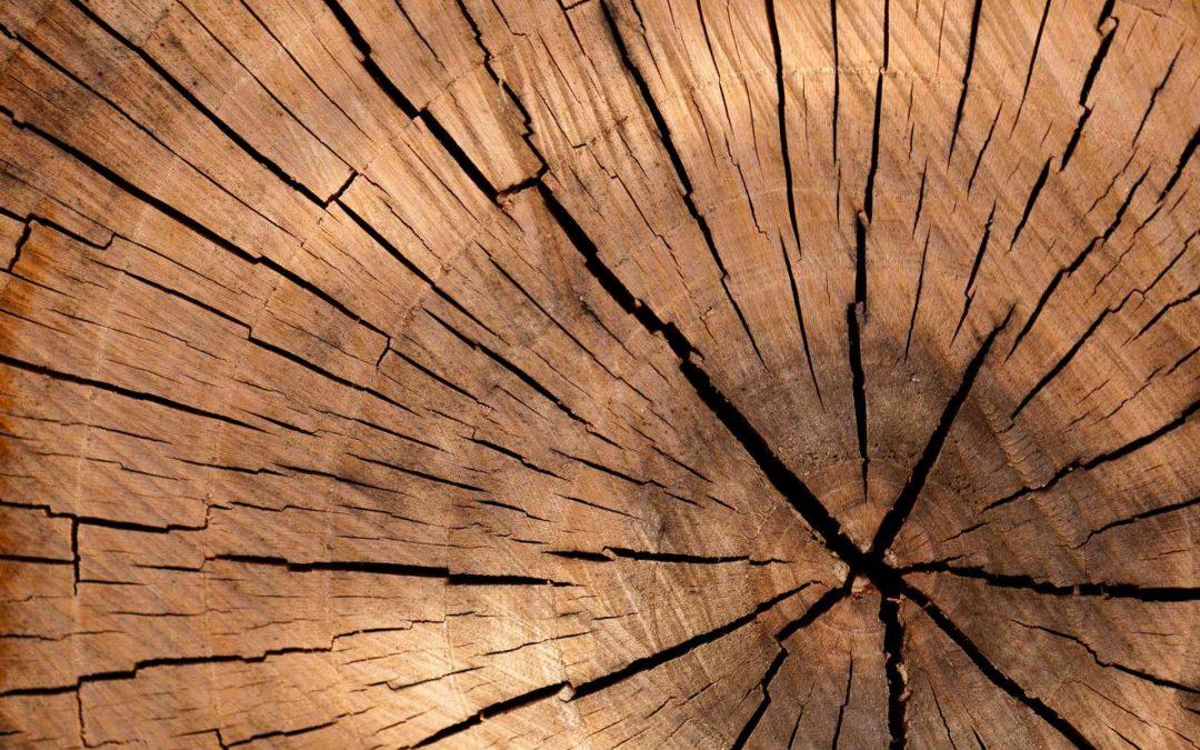 Maderera Andina: ¿Que es la madera laminada encolada MLE?