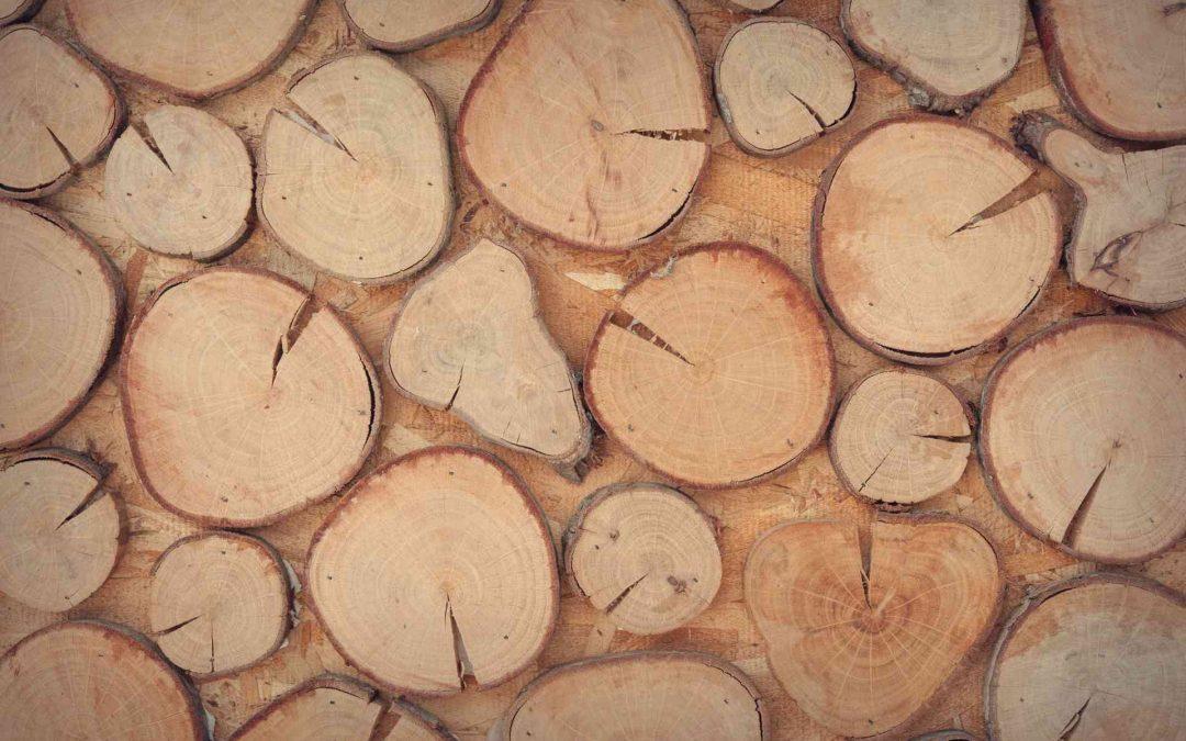 Maderera Andina: ¿Cómo mantener la madera laminada?
