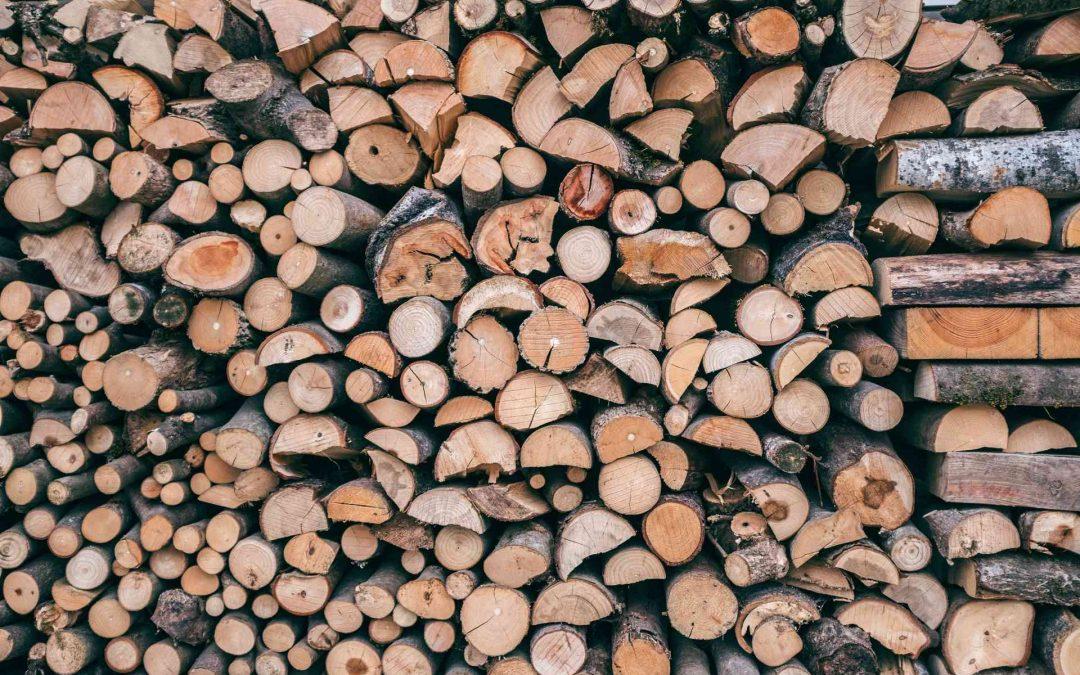 Maderera Andina: La madera laminada contra el fuegoMaderera Andina: La madera laminada contra el fuego